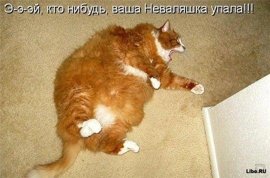 ya-vchera-s-babaoy-lizalsya