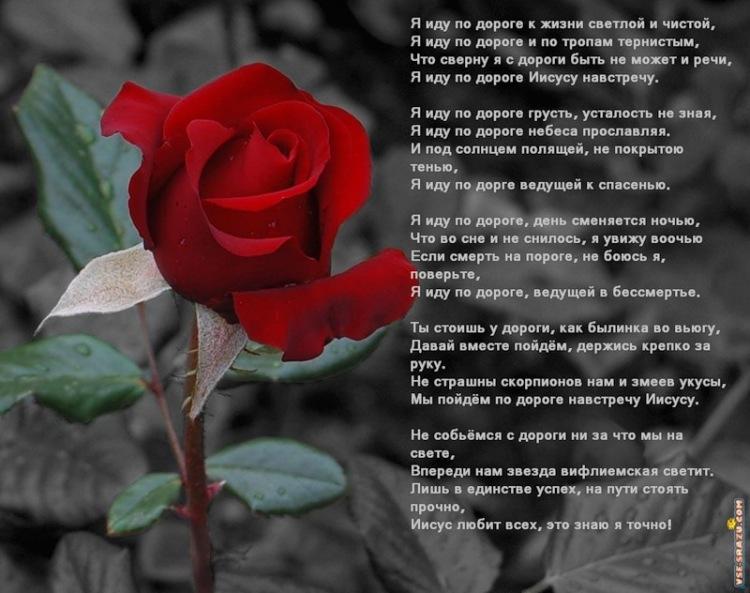 Стих я вам завтра помогу стих
