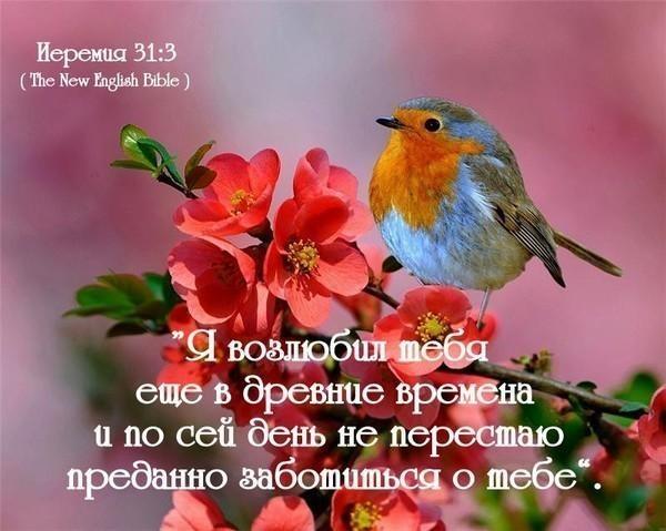 Христианские открытки с любовью