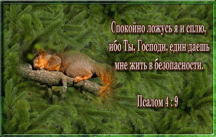 Христианские открытки с цитатами из библии 78
