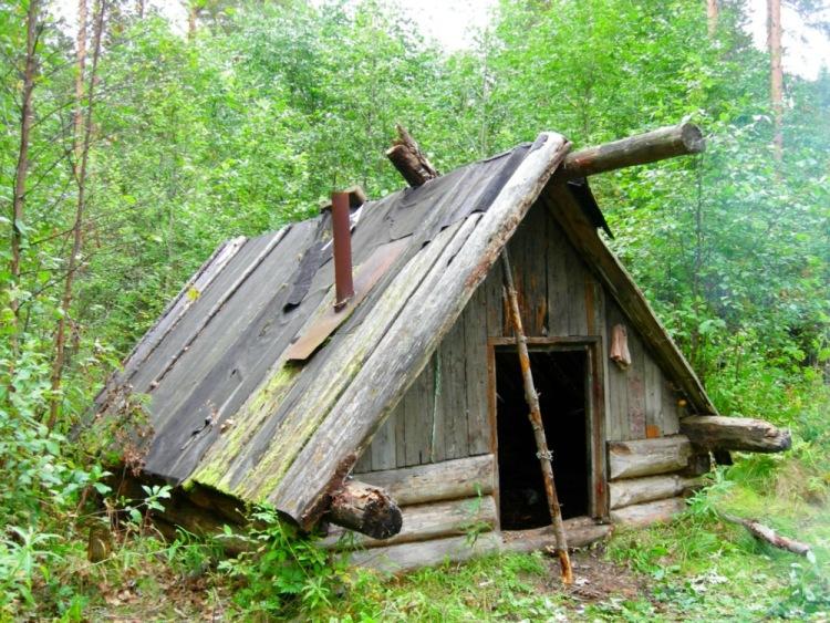 Избушка своими руками построить в лесу