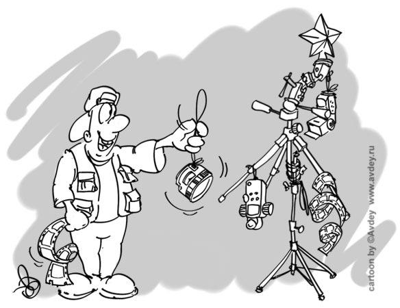 Сеть полнится новогодними подборками фото домашних любимцев на ёлках